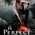 A week ago, I announced that both bestselling authors Kim Harrison and Patricia Briggs would be stopping by on the same day to sign their newest books, A Perfect Blood […]